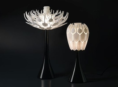 Bloom Lamp